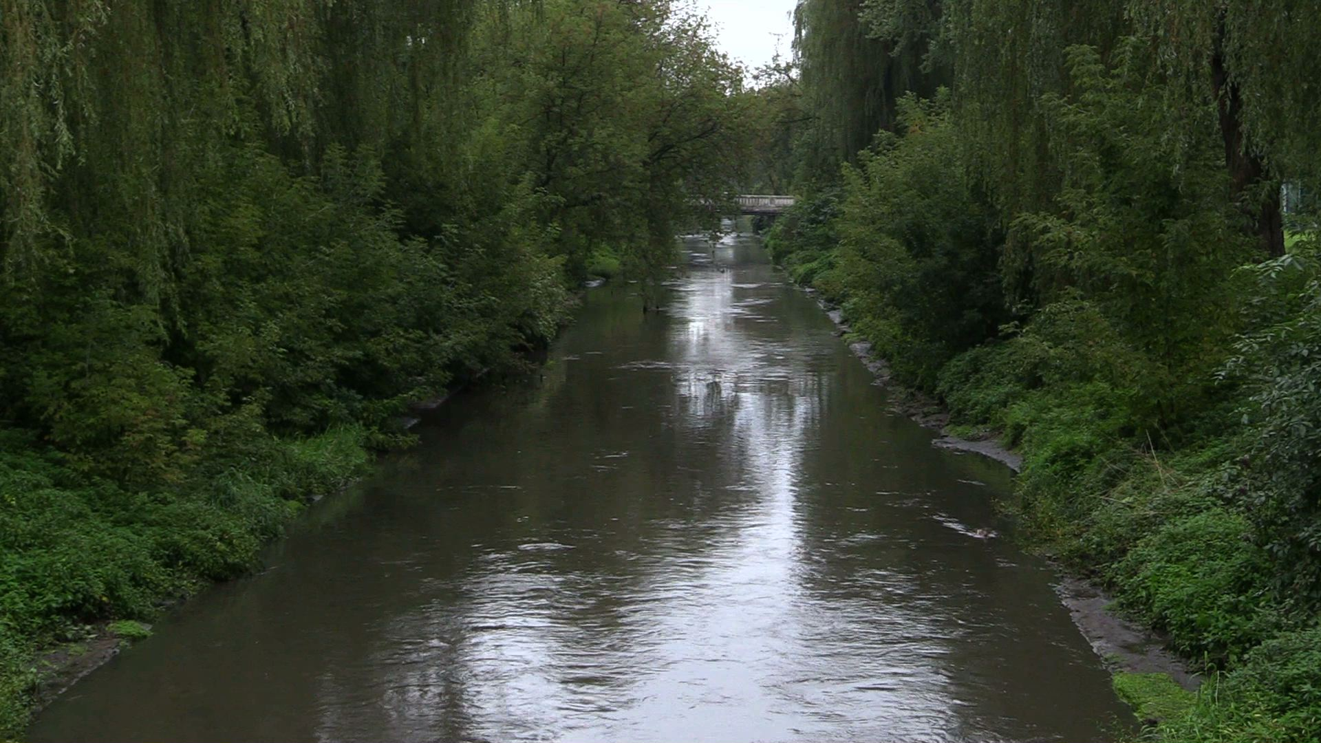 Zanieczyszczona rzeka w Bielsku-Białej! Strażacy musieli ustawić zapory