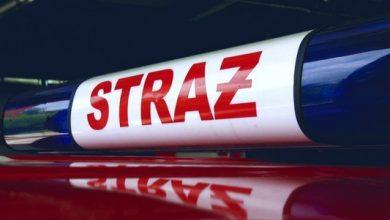 Służby ustalają, skąd wzięła się ropopochodna substancja w Żabich Dołach w Chorzowie. Urokliwy zakątek został zanieczyszczony, a ze skutkami walczy straż pożarna.