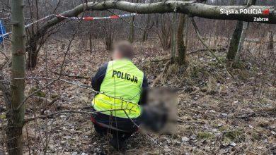 Przy DK88 w Zabrzu znaleziono zwłoki! [ZDJĘCIA] Czy to zaginiony rok temu mężczyzna?