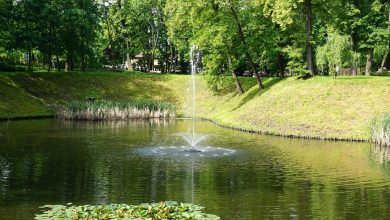 Fontanna na środku stawu? Park Szwajcara w Gliwicach ma nową atrakcję (fot.MZUK Gliwice)
