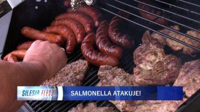 Coraz więcej przypadków zatrucia salmonellą na Śląsku! Sanepid ostrzega, bo wracają upały