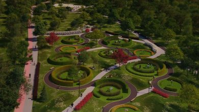 W Dąbrowie Górniczej ruszyła przebudowa Parku Hallera. Wszystko ma się tu zmienić!