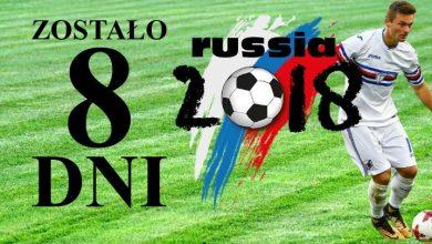 Mundial już za 8 dni! Który z polskich piłkarzy jest uczulony na gluten? Nie jest to Lewandowski! (fot.poglądowe/www.pixabay.com)