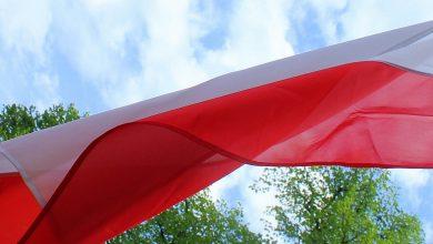 Komu ufają Polacy? Posłom i senatorom czy samorządowcom? (fot.poglądowe/www.pixabay.com)