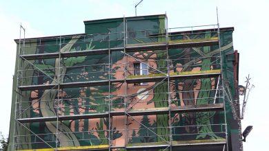 Sosnowiec: Kamienicę obrósł las! Niesamowity mural powstał przy ul.Kościelnej