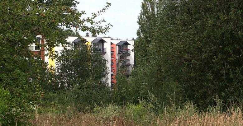 Mieszkańcy osiedla Bończyka Tuwima w Mysłowicach nie chcą drogi zamiast parku i terenów zielonych