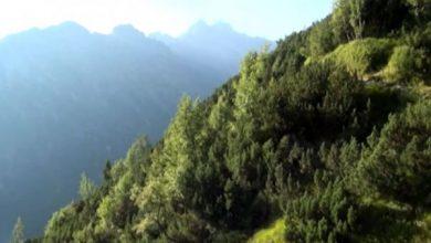 Na Wyżniej Kondrackiej Przełęczy pod Giewontem piorun uderzył w grupę turystów(TVP Info)