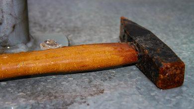 Skatował psa młotkiem. 71-latek twierdzi, że zrobił to w trosce o czworonoga (fot.poglądowe/www.pixabay.com)