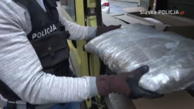 To narkotykowy rekord w woj.śląskim! Ogromny transport narkotyków przejęli katowiccy policjanci (fot.KWP Katowice)