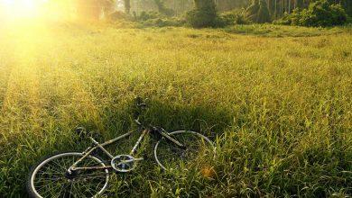 Ukradł rower i dał ogłoszenie o jego sprzedaży (fot.poglądwoe/www.pixabay.com)