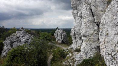 22 września rusza Juromania - pierwsze Święto Szlaku Orlich Gniazd na Jurze Krakowsko-Częstochowskiej (fot.Wojciech Żegolewski)