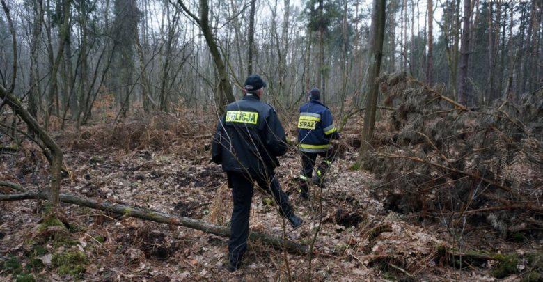Tragedia w gminie Jemielnica: Martwa grzybiarka znaleziona w lesie!