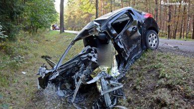 Śląskie: Tragiczny wypadek w Tworogu. Mężczyzna zginął podczas manewru wyprzedzania (fot.Śląska Policja)