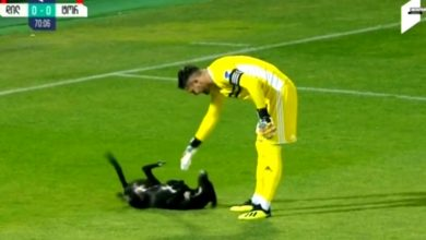 Pies zmusił sędziego do sięgnięcia po gwizdek, bo nie zważając na ligowy mecz - postanowił pobiegać po boisku i pobawić się z piłkarzami