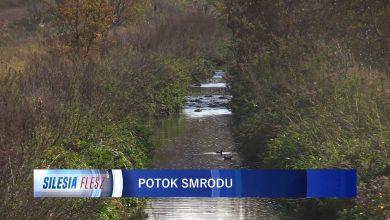 Mieszkańcy Rudy Śląskiej mają dość smrodu z rozlewiska przy Potoku Bielszowickim