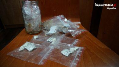 Śląskie: Pies wytropił narkotyki w piwnicy 22-latka. Można z nich zrobić 320 działek (fot.Śląska Policja)