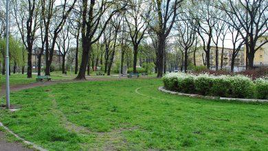 Katowice: Kolejny zielony skwer przejdzie lifting. Rewitalizacja Placu Londzina (fot.wikipeedia)