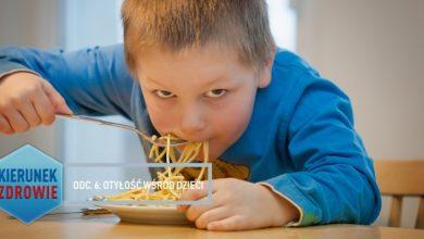 Kierunek Zdrowie: Otyłość wśród dzieci (fot. pixabay.com)