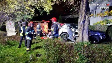 Tragiczny wypadek w Bielsku-Białej. Nie żyje 22-latek [ZDJĘCIA] (fot.KMP Bielsko-Biała)