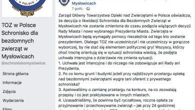Czy schronisko w Mysłowicach będzie zlikwidowane? Władze czekają na decyzje nowego prezydenta