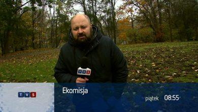 EkoMisja w TVS: Dziki temato-żerne, tramwaj z dżunglą i eko rower w Metropolii