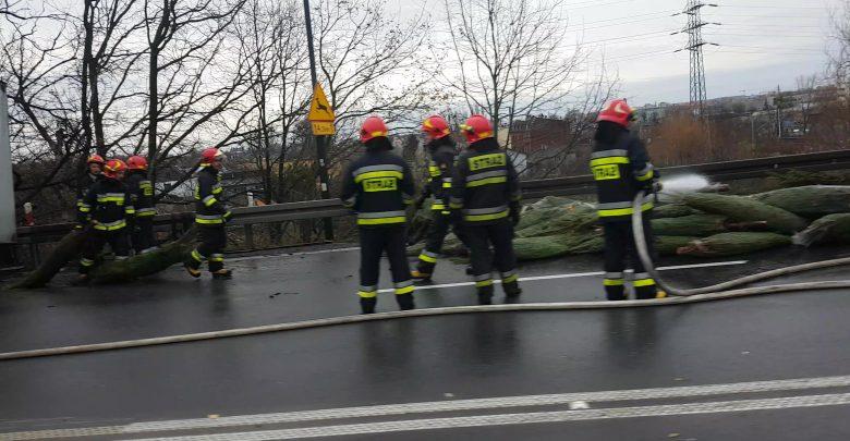 Gliwice: TiR z choinkami zablokował drogę. Drzewka wypadły na ulicę [WIDEO] (fot. Bartek 112 Katowice)