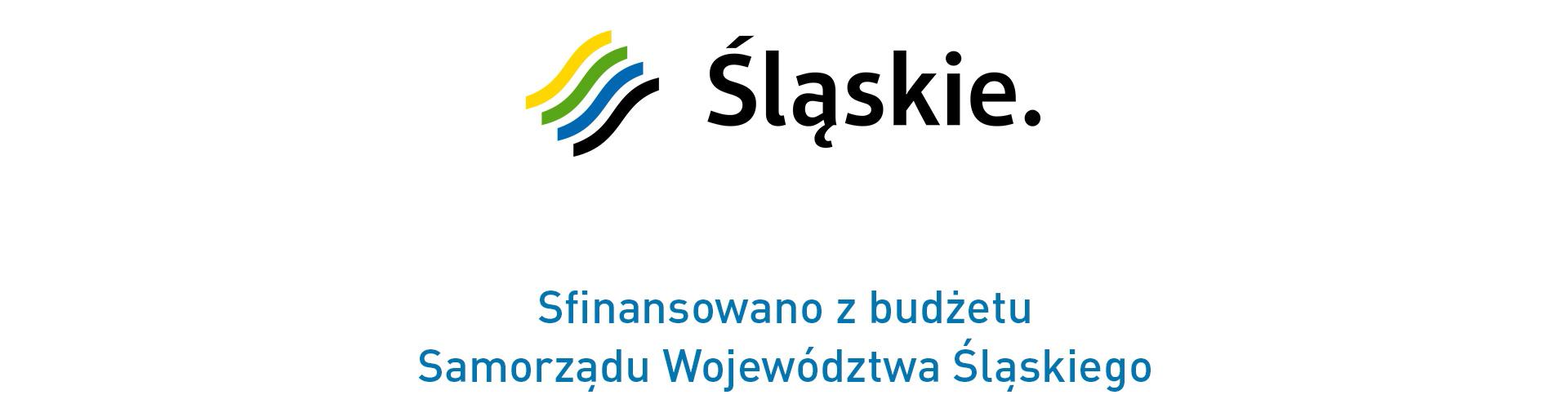 Stres (fot. Urząd Marszałkowski Województwa Śląskiego)