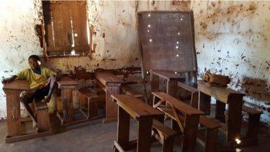 Papier z Rudy Śląskiej pomoże mieszkańcom Madagaskaru