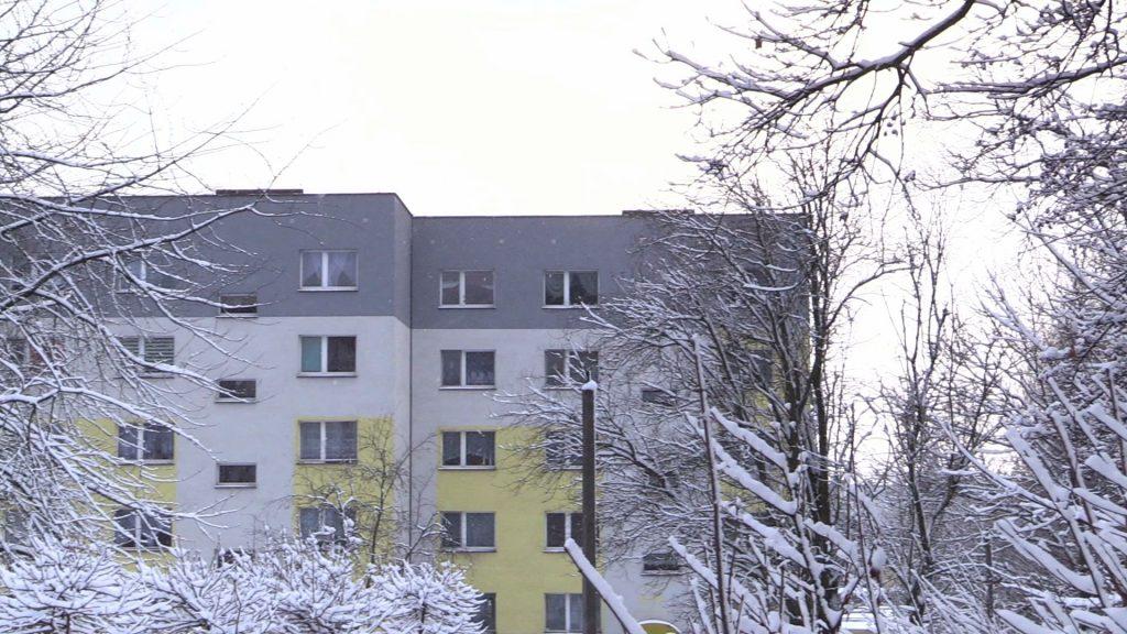 Urzędnicy z Bytomia ostrzegają zarówno mieszkańców samego Bytomia jak i Tarnowskich Gór przed planowanym właśnie na 5 stycznia odstrzałem dzików