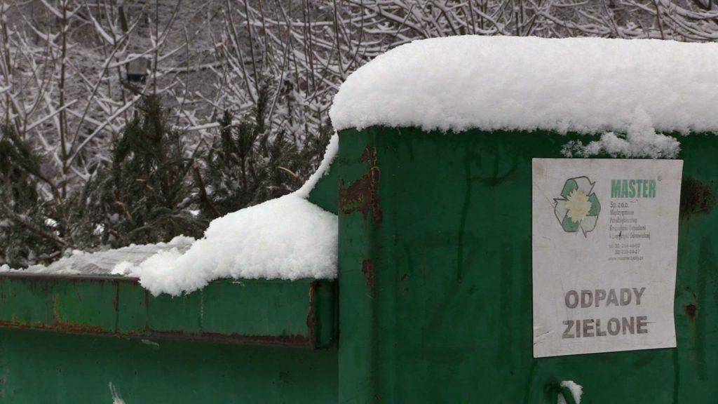 W większości miast choinki traktowane są jako odpady wielkogabarytowe. Trzeba więc sprawdzić, kiedy można je postawić przy śmietniku