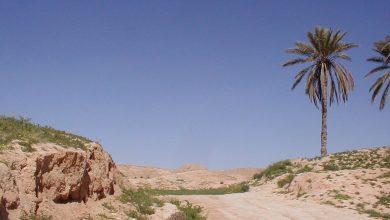 Protesty i manifestacje w Tunezji [OSTRZEŻENIE DLA PODRÓŻUJĄCYCH] MSZ odradza podróże