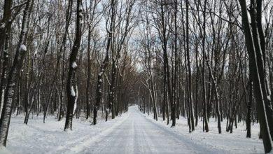 Zima stulecia w Polsce? Kiedy nadejdzie zima? [PROGNOZA POGODY, ZIMA 2019]