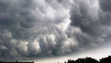 Trwa liczenie strat po silnym wietrze na Śląsku. Ponad 1400 gospodarstw bez prądu