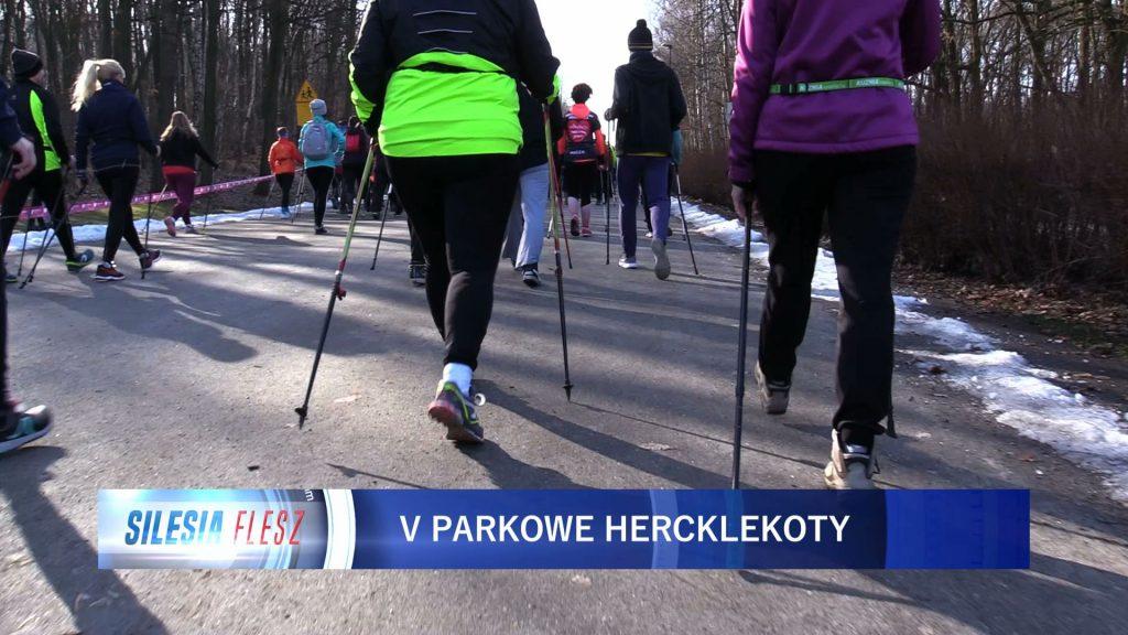 W Katowicach odbyła się już piąta edycja biegu Parkowe Hercklekoty. Tym razem uczestnicy mogli wystartować na dwóch dystansach