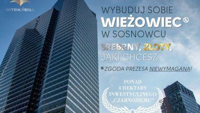 Arkadiusz Chęciński zaorał internety. Wybuduj sobie wieżowiec w Sosnowcu