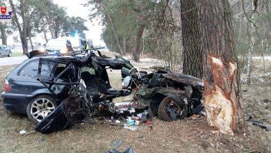 Pijany uderzył w drzewo. Zabił pasażera (fot.Policja Lubelska)