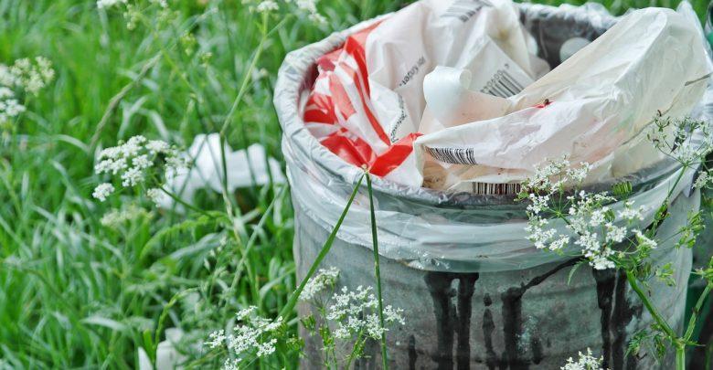 Tony gnijącego i śmierdzącego mięsa wyrzucona na środek pola! To mięso z chorych krów? (zdjęcie poglądowe - pixabay.com)