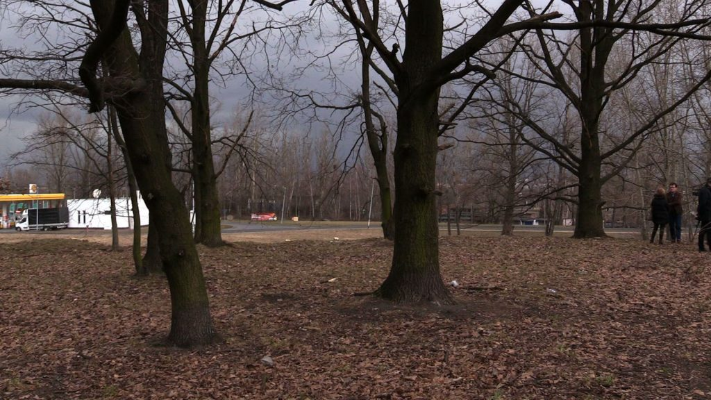 Mieszkańcy osiedla Wielka Skotnica w Mysłowicach obawiają się, że ostatni skrawek zieleni w tym miejscu zostanie wycięty