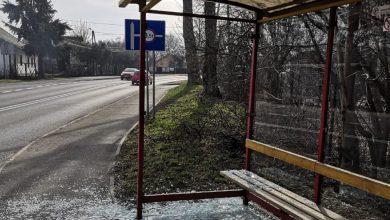 Bielsko-Biała: Policja poszukuje świadków uszkodzenia przystanku na ul. Wyzwolenia (fot. KMP Bielsko-Biała)