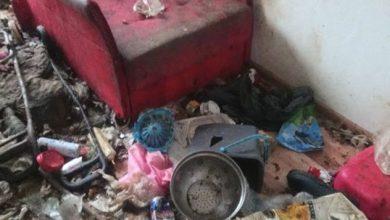 W takich warunkach mieszkała z 10 psami na 20m2 [ZDJĘCIA] Odchody były wszędzie (fot.KTOZ/fb)