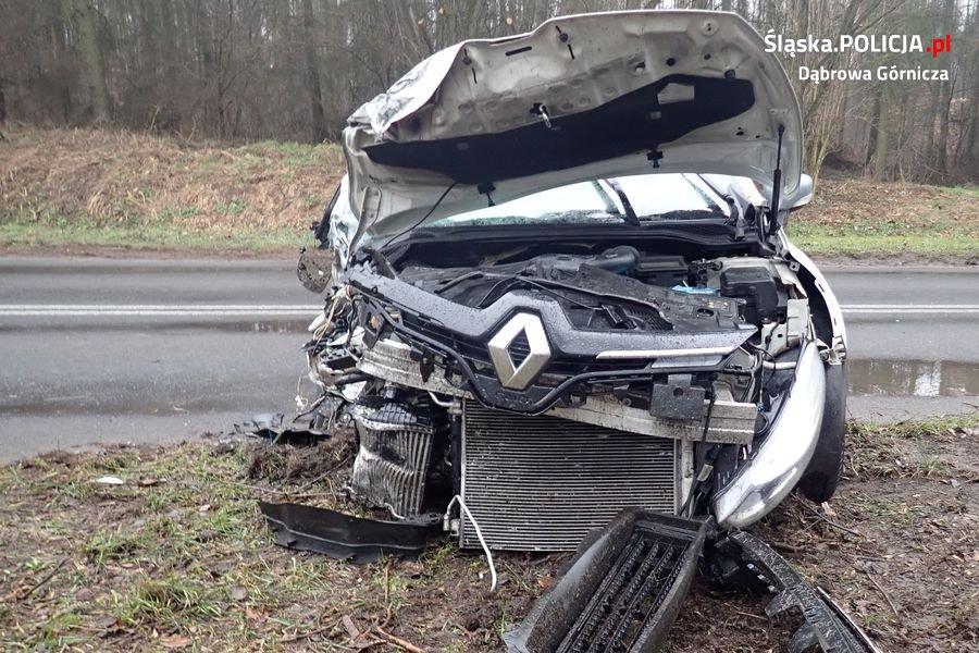 Śmiertelny wypadek w Dąbrowie Górniczej miał miejsce na na dąbrowskim odcinku drogi nr 790, nieopodal skrzyżowania z ul. Kazdębie (fot.policja)