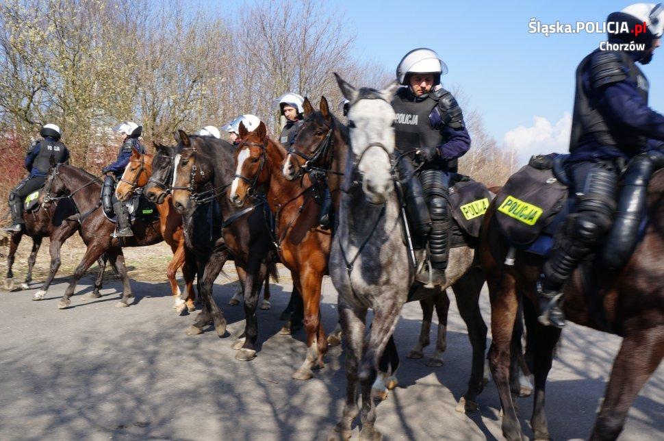 Szarżują przez ogień jak ułani! Zobaczcie ćwiczenia śląskich policjantów z oddziału konnego (fot. KWP Katowice)