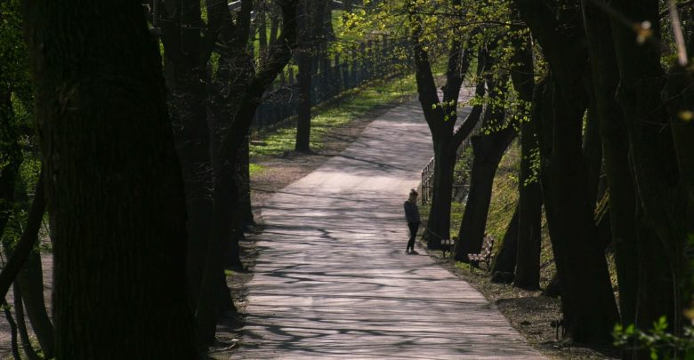 Mysłowice: Oczka wodne i romantyczny mostek. Wkrótce ruszy przebudowa Promenady!