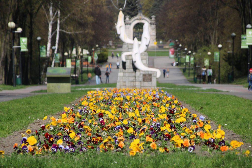 Ależ pięknie! W Parku Śląskim kwitnie 14 tysięcy kwiatów! (fot.Park Śląski/facebook)
