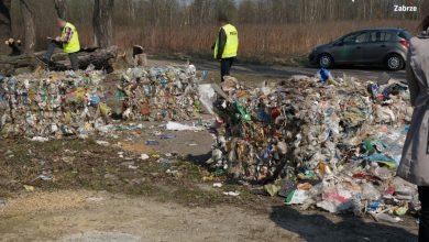 Tony śmieci w Zabrzu [WIDEO,ZDJĘCIA] Kolejne osoby zatrzymane