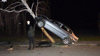 Zaparkował na brzozie [ZDJĘCIA] 21-letni kierowca BMW był pijany (fot. Policja Lubelska)