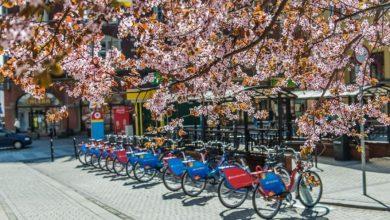 Gliwicki rower miejski zniknie? Miasto uspokaja: 1 kwietnia znowu wsiądziemy na rowery!