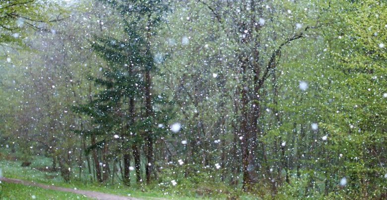 Przymrozki i opady śniegu - IMGW wydał OSTRZEŻENIE METEO