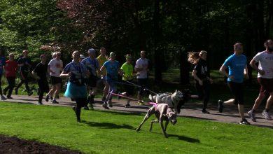Parkrun obchodził w katowickim Parku Kościuszki swoje 3, urodziny. Rzecz jasna - biegowo!