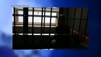 Rybniccy policjanci rozbili zorganizowaną grupę przestępczą zajmującą się czerpaniem korzyści z prostytucji